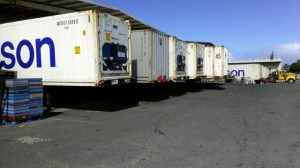 18 Available Docks To Expedite & Unload Multiple Containers and Freight